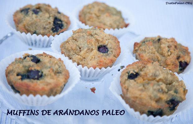 muffins-de-arandanos