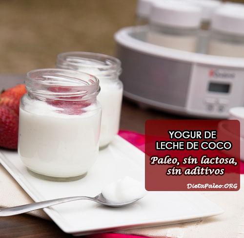 yogur-leche-de-coco
