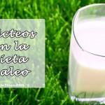 lacteos-en-la-dieta-paleo