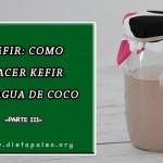 Como hacer kefir de agua de coco